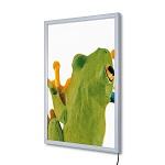 LED Economy Snap frame