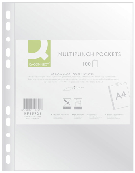 Punched pocket for documents